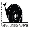 Museo di Storia Naturale Certosa di Calci